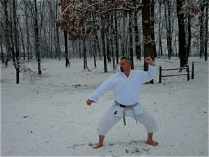 Kata practice during the last snow of 2012. Out with the old.